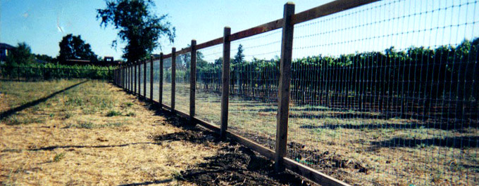 Quality Fences And Decking At An Affordable Price